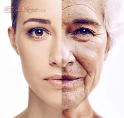 типы старения лица